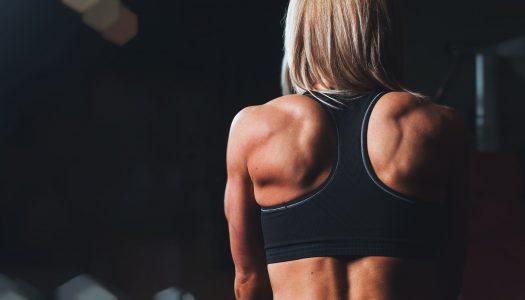 Træningsprogram – Guide og komplet styrketræningsprogram